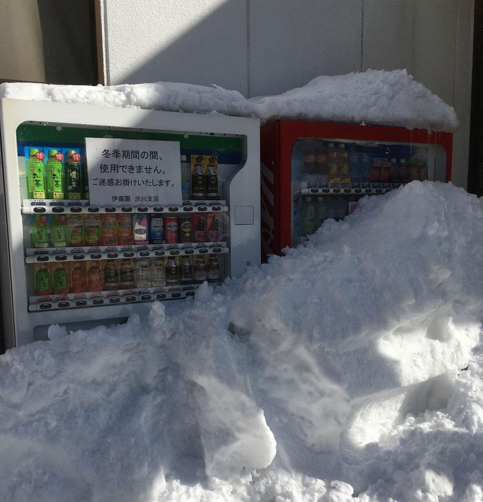 m_tanigawa_5